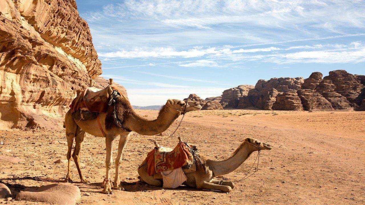 Adventure Trip to Jordan